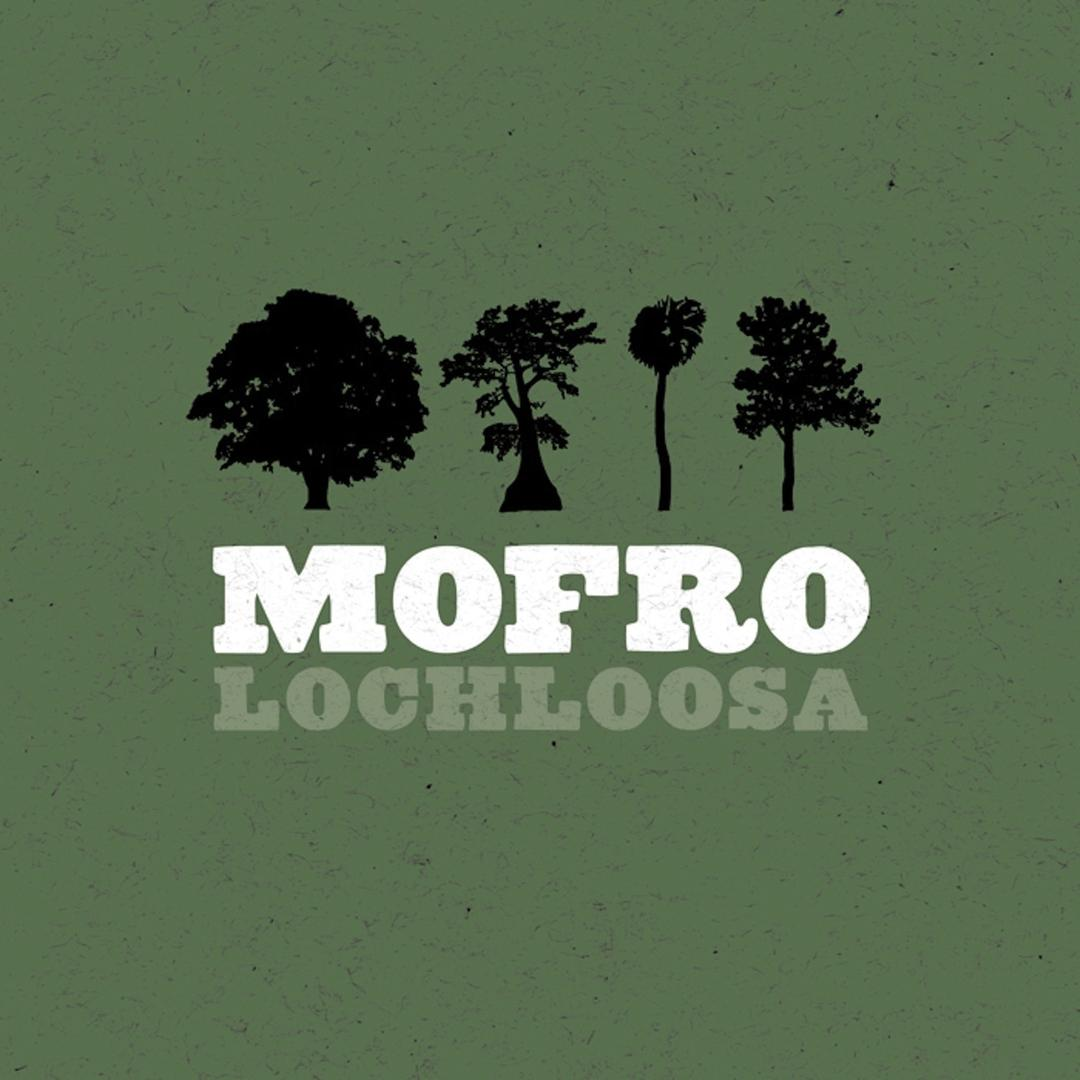 torrent jj grey and mofro discography